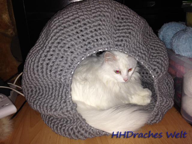 Eine Katzenhöhle Mal Anders Hhdraches Welt